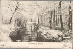 Lebbebeek