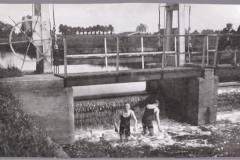 Mallem Stuw Zwemmers 1930