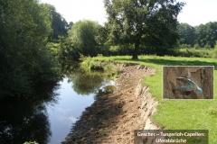 Gescher - Tungerloh-Capellen: Uferabbrüche