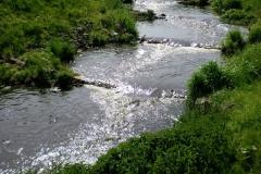 Stokkersbrug - Fischaufstieg