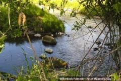 Billerbeck-Hamern - neue Mäandrierung