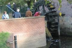 Bij Berenschots Watermolen, Foto Tonny Schulenberg