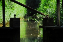 Fotowedstrijd-Han ten Brinke 8