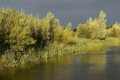 Fotowedstrijd-Jaap Luijendijk 7